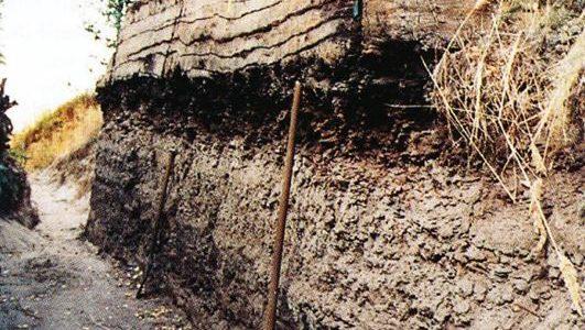 25 Jahre Fachbereich Geologie im Museum Cottbus