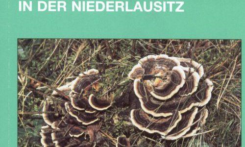 Natur und Landschaft in der Niederlausitz Heft 20