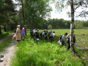 Botaniker besuchen des Dubringer Moor