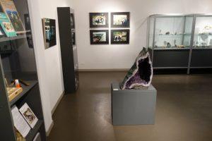 Blick in die Sonderausstellung 'Faszination Sammeln' im Stadtmuseum Cottbus