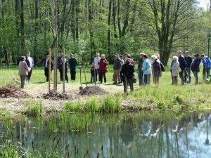 Tag des Baumes 2017 im Tertiärwald Cottbus