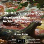 """Vortrag """"Ein 291 Millionen Jahre alter Boden: Einzigartiger Lebensraum und Archiv der Erdgeschichte"""""""
