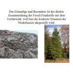 """Vortrag """"Die miozäne Flora des Blättertons von Wischgrund ..."""""""