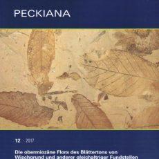 Monographie zur Tertiärflora von Wischgrund erschienen